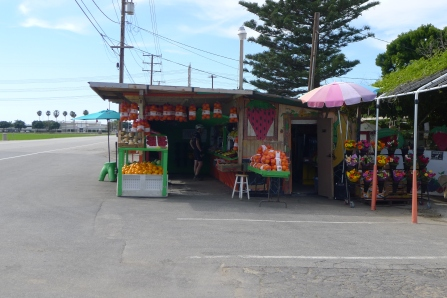 Fruit Stand in Oxnard