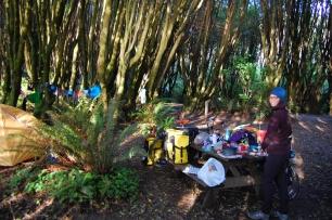 Gualala campsite