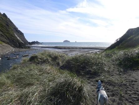 Beach at Humbug
