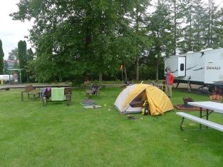 Campsite at Elma